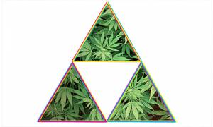 Phenomenons in Politics -- Tri-Partisan Support in RI? The Marijuana Regulation, Control and Taxation Act
