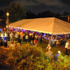 Food, Music, Fun: Taste of the Valley Launches Pawtucket Arts Festival