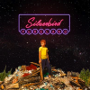 Rob's Album Of The Week: Silverbird's Pureland