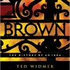 Book Review: Brown: History of an Idea by Ted Widmer