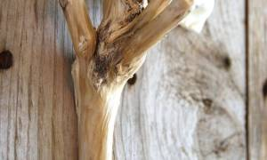 Rhode Island Rustic: The Perfect Gift for the Modern Tree Hugger
