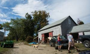 Tilted Barn Brewery Film Profile