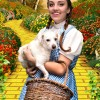 Over the Rainbow: The Wizard of Oz